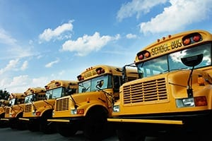 Row Of Parked School Buses Stock Photo