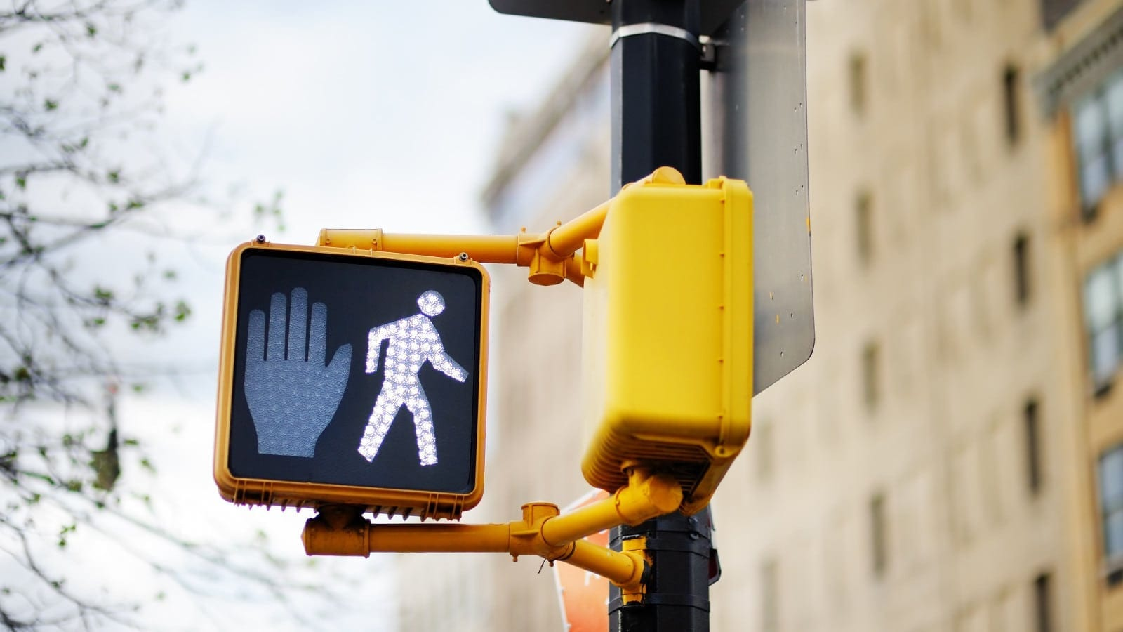 Do Not Cross Street Traffic Sign Stock Photo