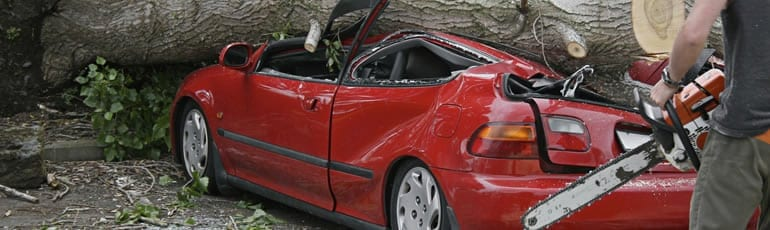 Tree Squashing A Red Car After Storm Stock Photo