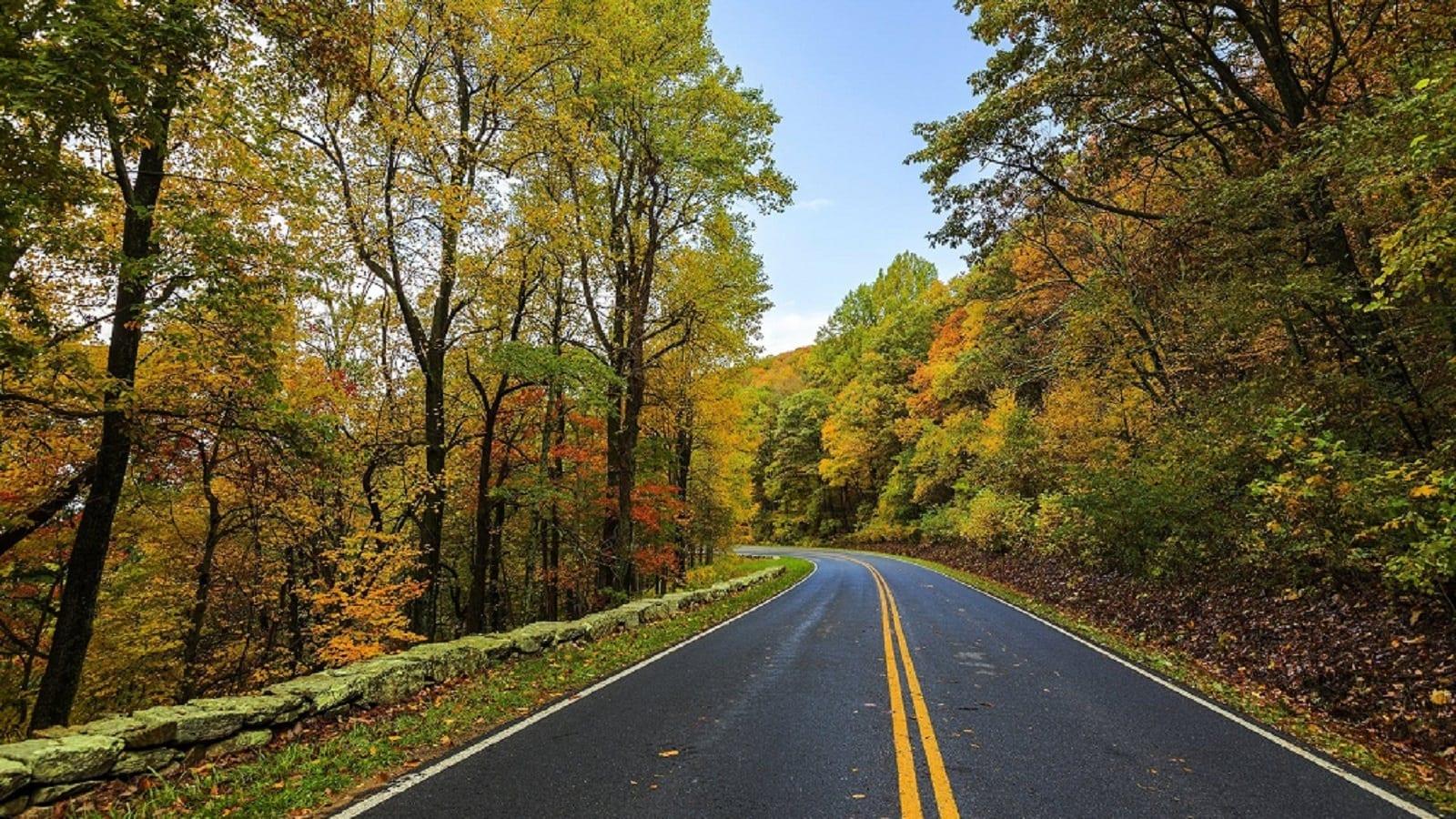 North Carolina Rural Road Stock Photo